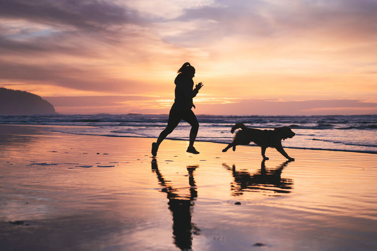 Sky Sunset Water Dog Canine Beach One Animal Mammal Land Domestic Silhouette Pets Domestic Animals Animal Themes Real People Sea Animal Cloud - Sky Reflection Horizon Over Water Pet Owner Outdoors