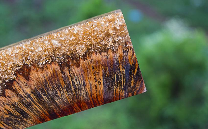 Casting epoxy resin stabilizing afzelia burl wood log