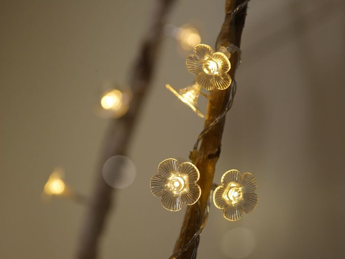 Illuminated No People Decoration Low Angle View Close-up Lighting Equipment Celebration Hanging Indoors  Focus On Foreground Glowing Light Chandelier Night Electricity  Christmas Light - Natural Phenomenon Gold Colored Christmas Lights