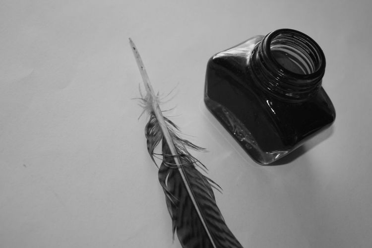 Close up of feather and ink on table