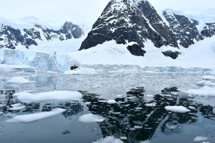 Antarctic Antarctic Peninsula Antarctica Glacier Glaciers Ice Iceberg Ocean Polar Climate Reflections Reflections In The Water Snow Winter Wonderland