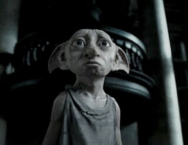 Harry Potter Dobby is a free elf:3