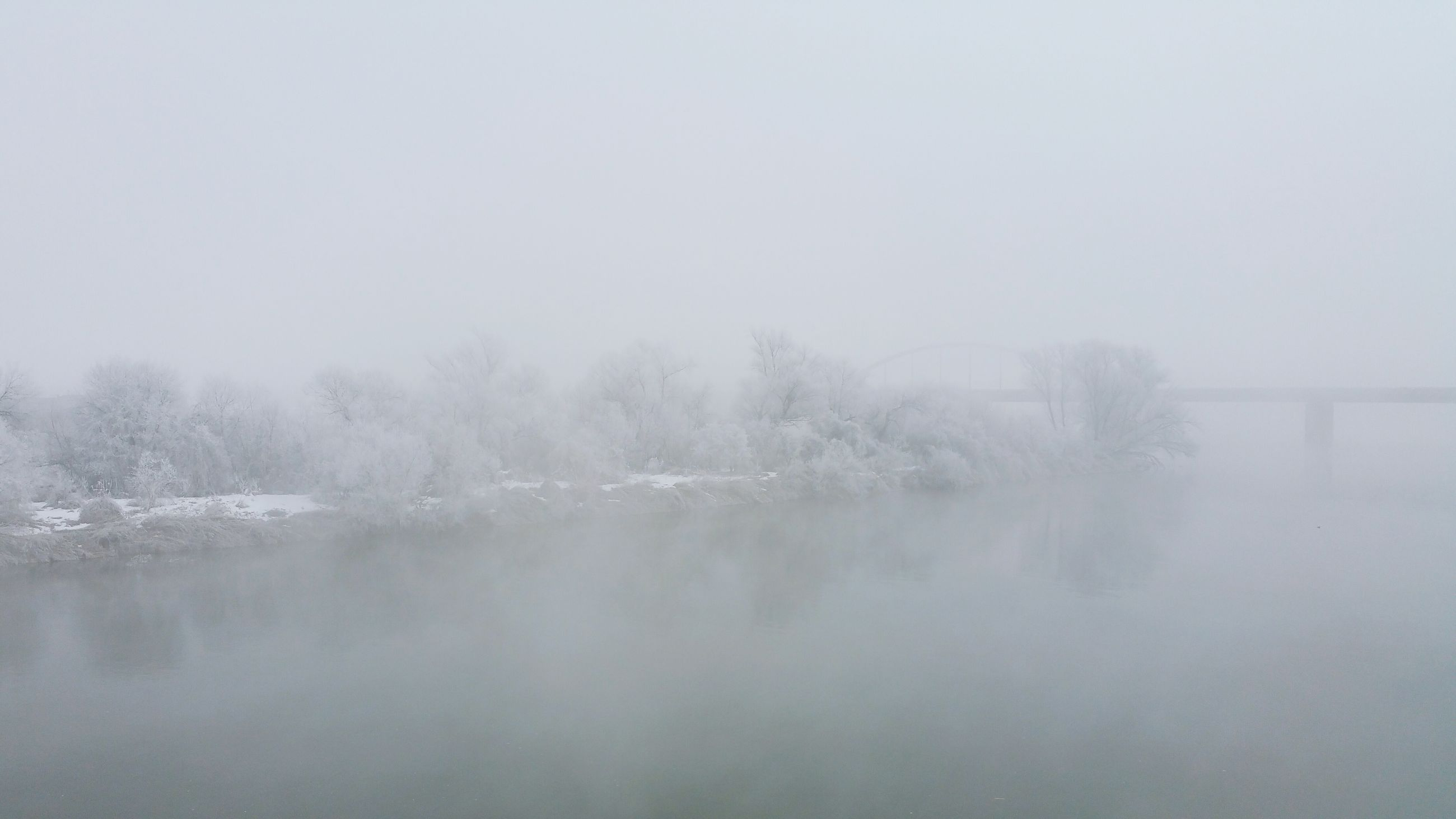 winter, cold temperature, weather, snow, fog, season, foggy, water, tranquil scene, tranquility, beauty in nature, scenics, frozen, nature, lake, tree, copy space, waterfront, covering