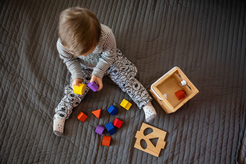 Babyboy Baby Blond Hair Child Childhood Cute Directly Above Down Syndrome Flooring Full Length Hair High Angle View Indoors  Innocence Mental Health  Multi Colored Offspring One Person Playing Toy Toy Block Wood - Material Young