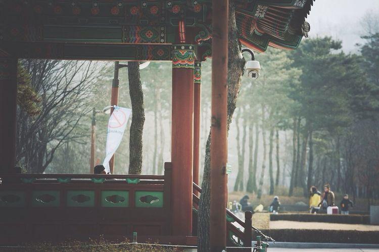 Korean Traditional Architecture Park