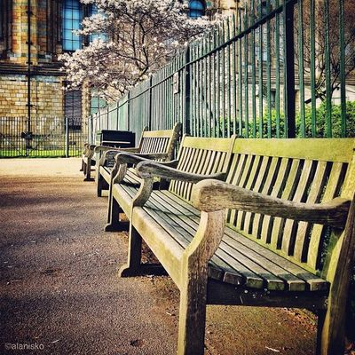 Lovely sunny bench ???☀ #alan_in_london #gf_uk #gang_family #igers_london #insta_london #london_only #thisislondon #ic_cities #ic_cities_london #ig_england #love_london #o2trains #gi_uk #ig_london Gi_uk Igers_london Ig_england Love_london Ic_cities_london Benches_Of_The_World_Unite Ig_london Gang_family Benchesoftheworldunite London_only Ic_cities Gf_uk Alan_in_london Insta_london O2trains Parkbenchthursday Thisislondon