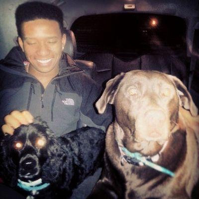 Sometimes I like dogs @tash_hannan Dogs Molly Clifford Dogwhisper