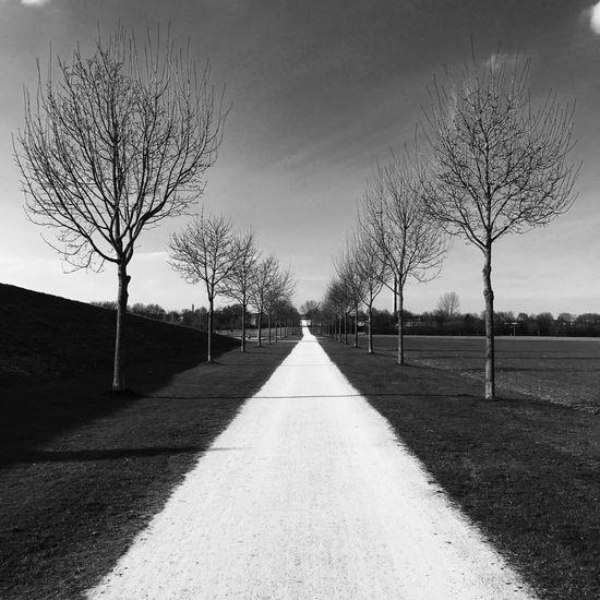 'Move Forward' Picture taken at the Wiley Park, Neu-Ulm, Germany Long Way Eyeemphotography Black And White Photography Blackandwhite Photography IPhone Iphonephotography Black & White Blackandwhite Bnw_collection Bnw Park University Hochschule Neu-Ulm Neu-Ulm Wiley Alley Way Direction The Way Forward Plant Tree Road Diminishing Perspective Nature Sky No People Outdoors Sunlight Day vanishing point
