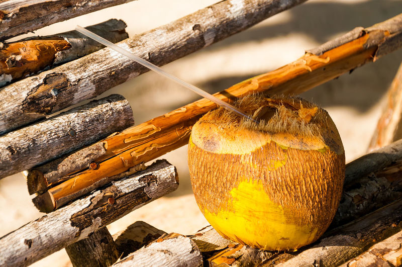 Close-up of straw in coconut on wooden structure
