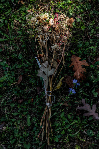 My Favorite Photo Ritual The Week On EyeEm Autumn Autumn Equinox Beauty In Nature Bouquet Bouquet Of Flowers Ceremony Day Dead Flowers Dried Flowers Dried Plant Freshness Growth High Angle View Idyllic Illuminated Floral Nature No People Outdoors Perfect Light Perfect Shot Nature_collection