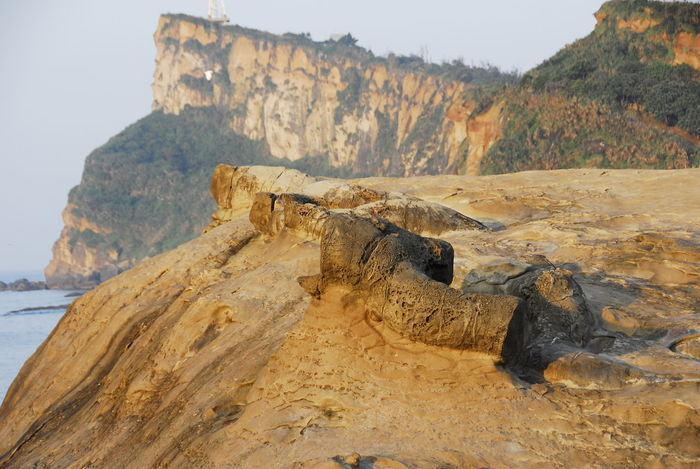Taiwan Beauty In Nature Cliff Day Geology Landscape Mountain Nature No People Outdoors Physical Geography Rock - Object Rock Formation Scenics Sky Tranquil Scene Tranquility Water 野柳 記憶