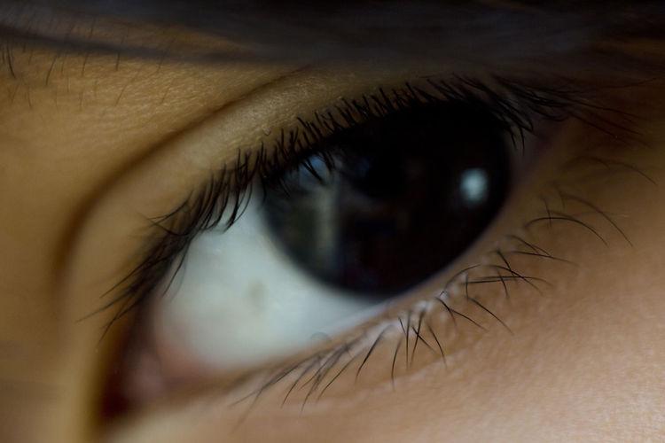 Cropped Image Of Boy Eye