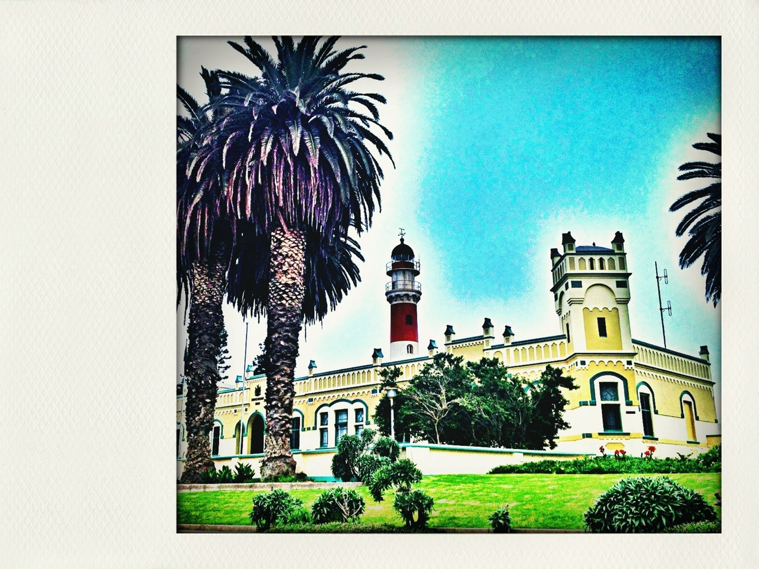 building exterior, architecture, built structure, tree, palm tree, clear sky, low angle view, blue, growth, city, sky, building, green color, auto post production filter, tower, outdoors, window, facade, church, day