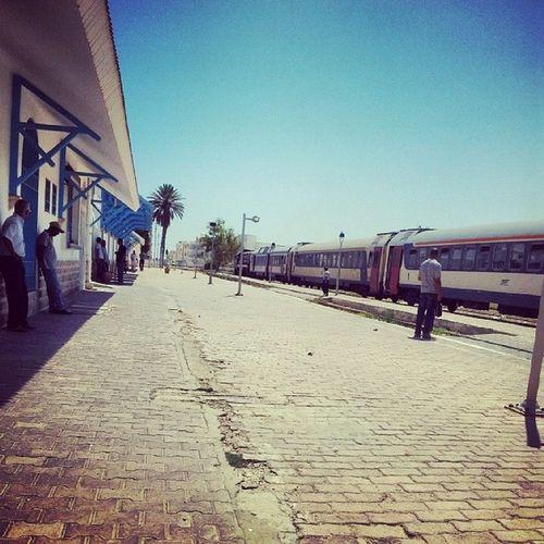 Tunisia Gabes Summer Train
