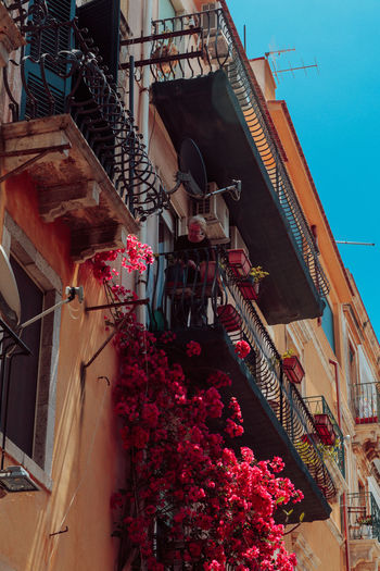 Sicily Summertime Travel Architecture Balcony Building Exterior Built Structure Day Flower Hanging Italy Low Angle View No People Outdoors Summer Vacation Window Box