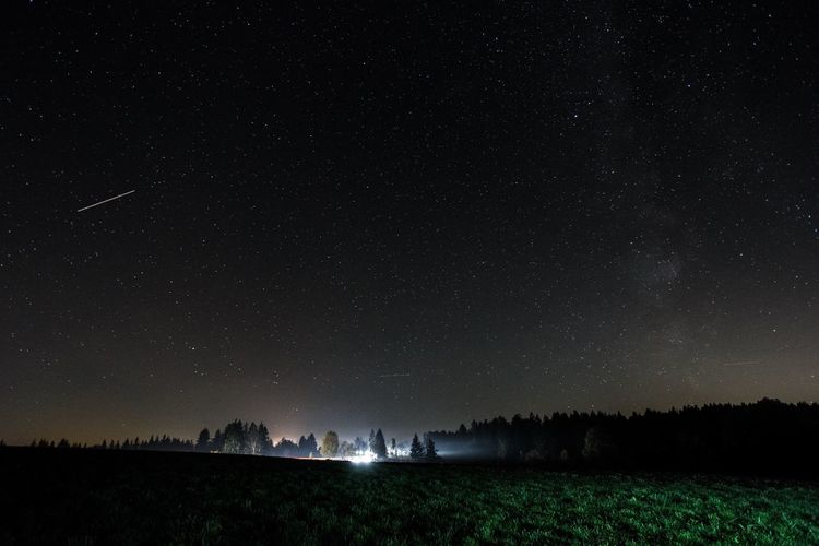Scenic view of starry sky over trees growing on field