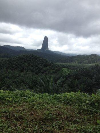 Sao Tome Sao Tome And Principe Sao Tome E Principe Island Africa Paradise Equador Tropical Climate Tropical Tropical Paradise Tropical Plants Tropics