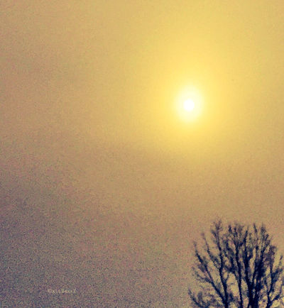 Showcase: November burn🌞⛅️ Taking Photos EyeEm Nature Lover Father Sky StreamzooVille Poetic Imagery Yellow Fortheloveofediting Sun Learn & Shoot: Simplicity Capture The Moment Sunrise Shades Of Winter
