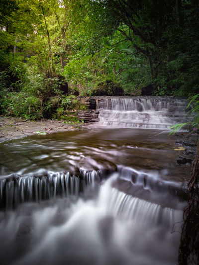 Water Flowing Water Waterfall Nature Long Exposure Motion No People Beauty In Nature Forest Tree Outdoors Day Scenics