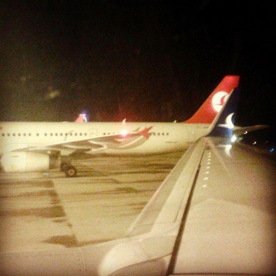 Turkishairlines Anadolujet Trabzon Havaalanı TZX night wings