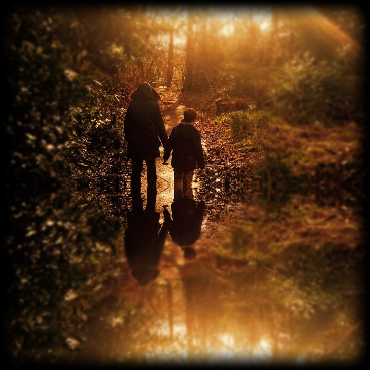 togetherness, walking, two people, rear view, full length, forest, real people, nature, childhood, tree, men, bonding, adventure, friendship, boys, outdoors, child, grass, day, people