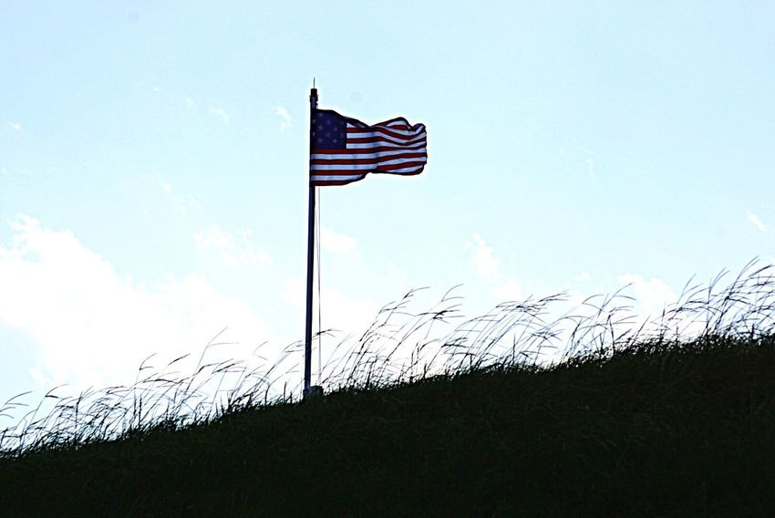 Symbols of Freedom flying at Ft Moultrie History Flag