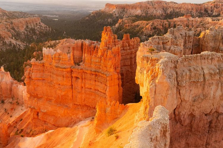 sunrise at Bryce Canyon Beauty In Nature Scenics - Nature Non-urban Scene Rock Tranquil Scene Rock Formation Nature Tranquility Rock - Object Travel Destinations Physical Geography Travel No People Geology Outdoors Eroded Bryce Canyon Sunrise Solid Landscape Canyon Environment Sandstone Layered