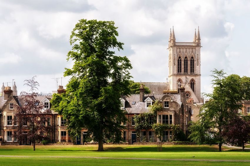Cambridge city view Building Exterior Built Structure Plant Architecture Tree Sky Building Cloud - Sky Grass Nature Place Of Worship Religion Day Belief Spirituality Travel No People History Travel Destinations