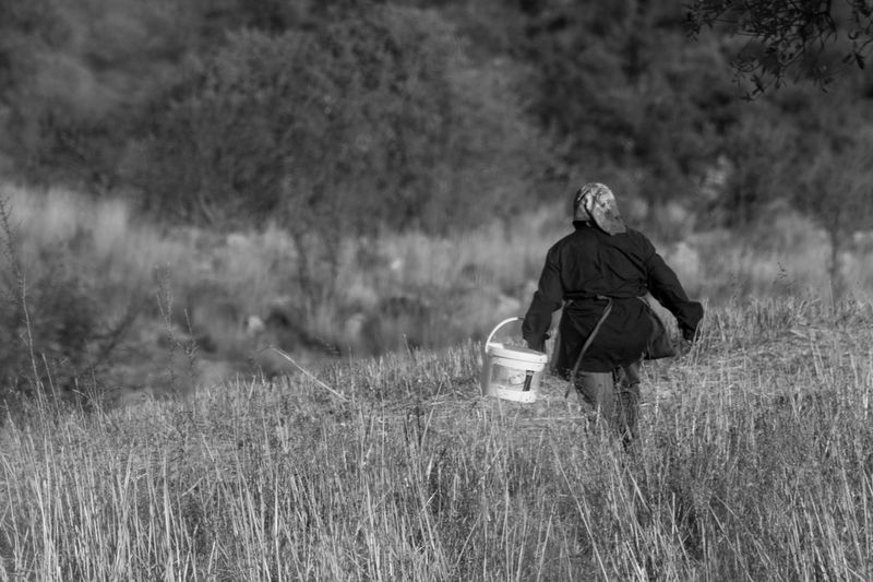 Rear view of woman with bucket walking on grassy field