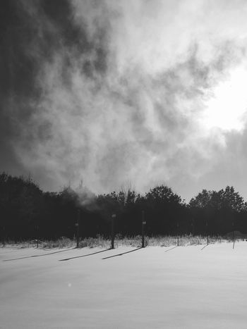 That fresh blanket of snow... Shadows & Lights Woods Minnesota Nature Shadows Cold Crispair Sunthroughthetrees Trees Nature Beauty In Nature Minnesota Steam Blanket Of Snow Shadows & Light Shadows In The Snow Blackandwhite Black And White Winter Godsbeauty Sky Landscape Day Beauty In Nature Snow Cold Temperature Weather Tree Tranquility Outdoors Scenics