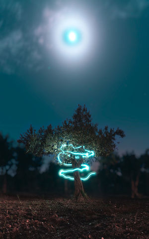 Light Painting Moon Nature Beauty In Nature Bright Field Forest Full Length Glowing Illuminated Land Leisure Activity Lens Flare Lifestyles Nature Night Outdoors Plant Real People Sky Standing Sun Sunlight Tree