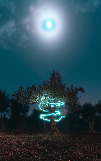 Light Painting On Tree Against Sky At Night