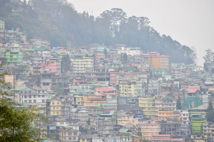 Cityview Architecture Building Exterior Built Structure City Cityscape Day Fog Gangtok, India Growth Morning No People Outdoors Skyscraper Tree