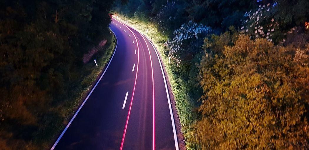 Road Tree Star
