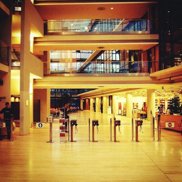 Library University University Of Szeged Hungary Könyvtár Night Building Lights Silence