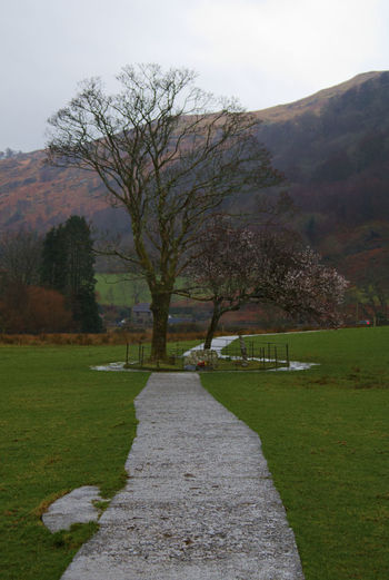 Gelert's grave. Beddgelert, beautiful small village which occupies the site of Gelert's grave, the dog of 13th century Prince of North Wales, Llywelyn. Llywelyn went hunting on a particular day without his dog. When Llywelyn returned back to his palace, in Beddgelert, his dog was happy to see him but he found his dog stained with blood and his son was missing from his cot and bloodstained bedclothes and floor. Llywelyn grabbed his sword and plunged it into the side of his dog thinking his dog had killed his son. As the dog yelled Llywelyn heard a cry of a baby. It was his son unharmed. Llywelyn also found the body of a wolf lying nearby which Gelert had killed to protect the prince's son. In remorse of killing his faithful dog the Prince was said to have never smiled again. Pathway Path Grave Gelert's Grave Tree Water Sky Grass Countryside In Bloom