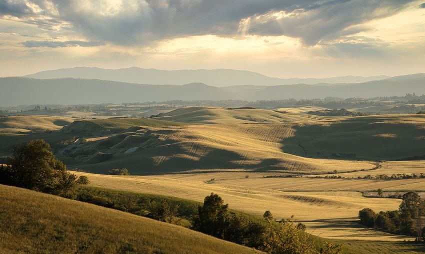 Scenic view of sweet golden  tuscan hills against sky