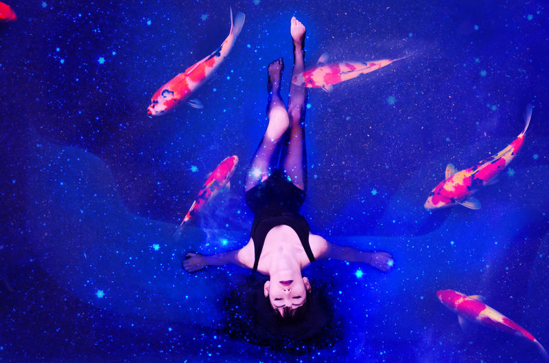 Cosmos Fish One Person Pool Surrealism Surrealism And Fantasy Art Surrealist Art Swimwear