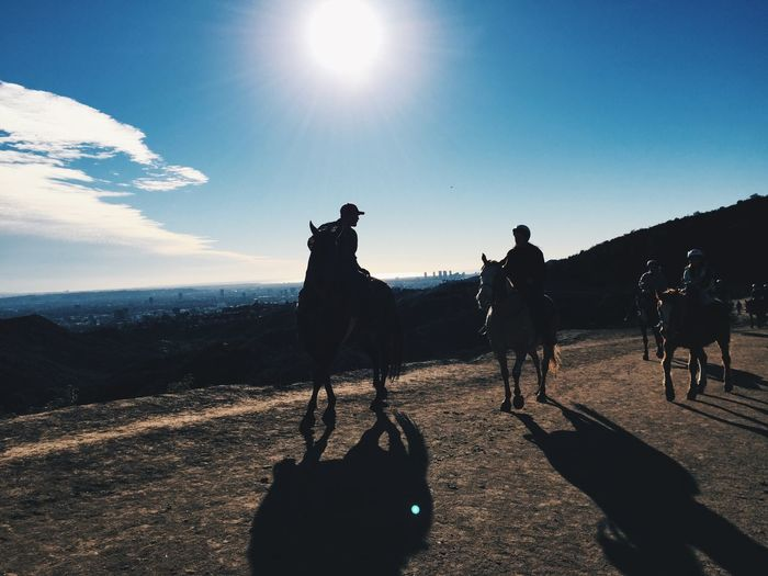 Silhouette of people horseback riding in countryside