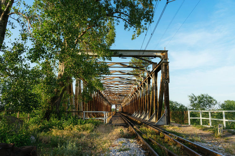 Bridge Plant Tree Sky Nature No People Day Track Cable Railroad Track Metal Connection Transportation Land Outdoors Direction Rail Transportation Growth Architecture The Way Forward Built Structure Diminishing Perspective Electricity  Poland Polska