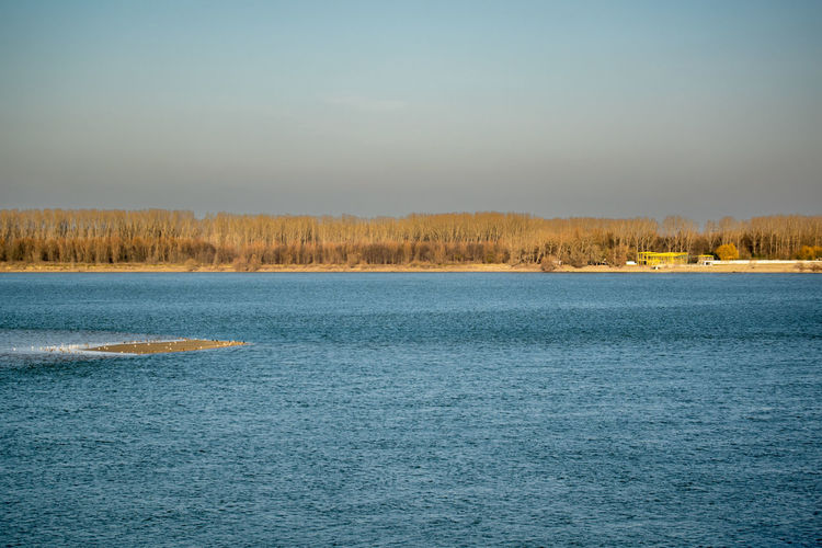 Danube between Bulgaria and Romania Beach Beauty In Nature Blue Clear Sky Danube Danube Rivver Disko Disko On The Beach Lake Landscapes With WhiteWall Nature Nature No People Outdoors Sky Small House Tranquil Scene Tree Water Here Belongs To Me Things I Like