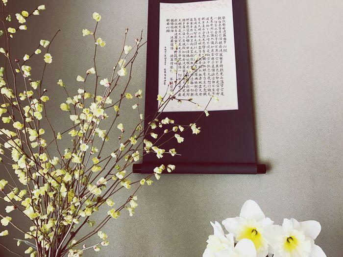 Caligraphy 般若心経 と Flower