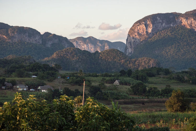 Viñales Valley: Landscape from outlook Agriculture Beauty In Nature Cuba Cuba Collection Day Landscape Mountain Mountain Peak Mountain Range Nature No People Outdoors Plant Scenics Sky Sunrise Travel Photography Tree Unesco Viñales