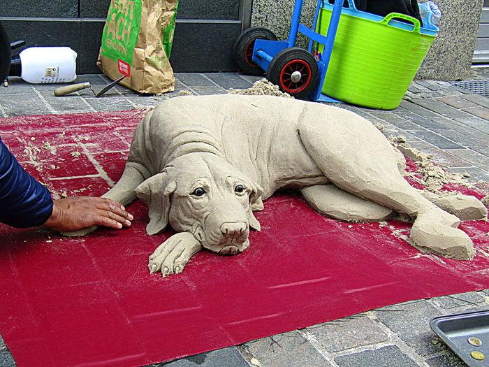 Ein Hund Entstand Aus Sandgemisch 2017 Heute In Rostock Today In The City Center--a Dog Was Made Of Sand Mixture