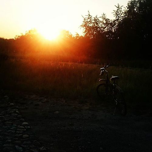 Sunset Bike Biketrip Cycling Happy Sun Nature Lovely Fitgirl Polishgirl Cellreset Fitline Fit Sports Trip 30km Poland EwaJoannaMatczyńskaPhotography
