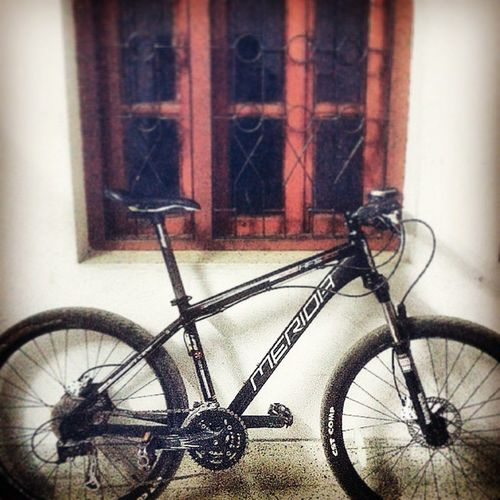 new cycle Mérida MTB Bike Rockshox HFS Alivio Draco Window Hfs300 Merida_hfs_300_challanger Black Mattee Chrome Love Passion Cycling Exercise