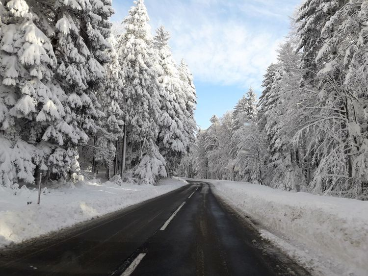 Cloud - Sky Cold Temperature Day Nature No People Outdoors Road Scenics Sky Snow Snow Covered Snow Covered Trees Snow Day Snow ❄ Snowy Snowy Days... The Way Forward Transportation Tree Winter Winter_collection Winter Photography Winter Road Winter Time Winter Trees Shades Of Winter