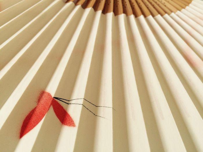 Cropped image of folding fan