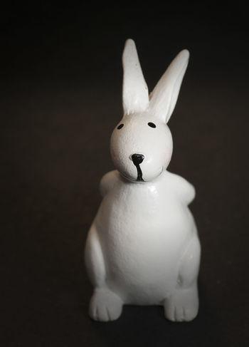 Studio Shot Piggy Bank Fracture Easter Bunny No People Stuffed Rabbit 🐇 Rabbit