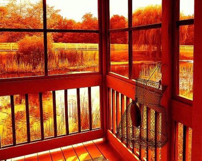 Outdoors Farm Life Pondhouse Tranquil Scene Nature Hidden Gems
